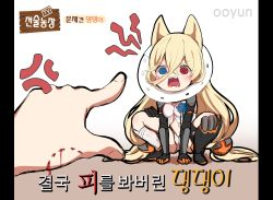 1girl @_@ all_fours anger_vein angry animal_ears armor artist_name asymmetrical_legwear bite_mark bleeding blonde_hair blood blue_flower blue_rose blush breasts commentary dress elizabethan_collar fangs flower g41_(girls_frontline) girls_frontline hair_between_eyes hair_ornament highres korean_text long_hair low-tied_long_hair navel open_clothes open_dress open_mouth panties pointing pointing_finger pov pov_hands rose shouting small_breasts thigh_strap thighhighs twintails underwear v-shaped_eyebrows very_long_hair white_dress white_panties yugion rating:Safe score:7 user:danbooru