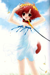 1girl animal_ears collar dog_ears dog_tail dress fang flat_chest flower head_wreath highres hinata_(pure_pure) leash pure_pure sakurazawa_izumi solo tail rating:Safe score:1 user:danbooru