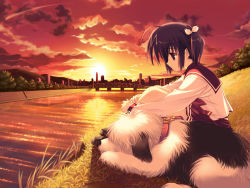 00s 1girl ahoge bangs black_hair bridge building cityscape cloud collar dog game_cg genjimaru grass hair_ribbon knees_up leash leg_hug long_sleeves looking_down mitsumi_misato mountain on_ground outdoors pleated_skirt profile raised_eyebrows red_eyes reflection ribbon river sad scenery school_uniform serafuku short_hair short_twintails sidelocks sitting skirt sky skyscraper solo sun sunset to_heart_2 tree twintails water yuzuhara_konomi rating:Safe score:0 user:danbooru
