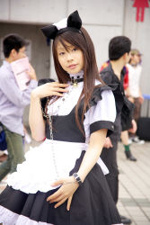animal_ears apron cat_ears collar cosplay highres leash maid maid_apron photo pochi_(model) rating:Safe score:1 user:Anonymous