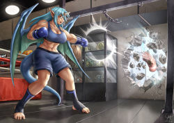 1girl armpits barefoot blue_eyes blue_hair blush boxing_gloves demon_girl demon_wings destruction dragon_girl dragon_wings gym horn long_hair matching_hair/eyes maxa' muscle muscular_female navel original punching punching_bag shorts solo sweat tank_top toeless_socks toes trophy_stand wall wings rating:Safe score:5 user:danbooru