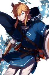 1boy belt blue_cape blue_clothes blue_eyes cape earrings highres holding holding_sword holding_weapon hood hood_down jewelry light_brown_hair link long_hair male_focus parted_lips pointy_ears quiver shield side_glance sidelocks solo standing sword takechu the_legend_of_zelda the_legend_of_zelda:_breath_of_the_wild tunic weapon