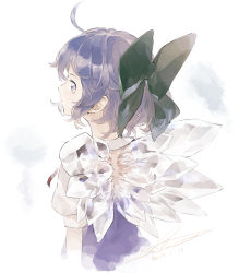 1girl ahoge blue_dress blue_eyes blue_hair cirno dated dress expressionless from_behind gradient gradient_background hair_ribbon ice ice_wings looking_away open-back_dress pale_color puffy_short_sleeves puffy_sleeves ribbon shihou_(g-o-s) short_hair short_sleeves signature simple_background solo touhou upper_body white_background wings