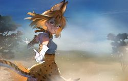 1girl animal_ears bangs bare_shoulders blonde_hair blue_sky bow bowtie breasts cloud day eyebrows_visible_through_hair fog gloves hair_between_eyes kemono_friends looking_at_viewer outdoors pov reaching_out savannah serval_(kemono_friends) serval_ears serval_print serval_tail short_hair sky sleeveless smile solo summergoat tail teeth thighhighs tree wind wind_lift yellow_eyes