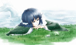 1girl blue_eyes blue_hair frog grass head_fins kihou_kanshouzai mermaid monster_girl partially_submerged short_hair smile touhou wakasagihime water wide_sleeves
