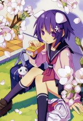 1girl absurdres animal_ears bag cherry_blossoms copyright_request dog_ears drinking_straw flower highres huge_filesize juice_box petals purple_eyes purple_hair school_bag school_uniform serafuku sitting sweater tsunako