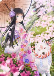 1girl animal_ears black_hair blue_eyes flower highres japanese_clothes long_hair oriental_umbrella original rope shimenawa solo taka_(tsmix) umbrella