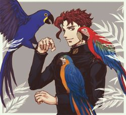 1boy animal animal_on_shoulder bird bird_on_arm bird_on_shoulder gakuran jojo_no_kimyou_na_bouken kakyouin_noriaki male_focus parrot plant red_hair school_uniform solo upper_body uraseesan