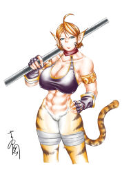 1girl abs absurdres ahoge animal_ears armlet bikini_top bottomless breasts breath_of_fire breath_of_fire_ii cat_ears cat_tail cleavage collarbone highres huge_breasts migi-yoshi older orange_hair rinpoo_chuan short_hair solo staff tail weapon