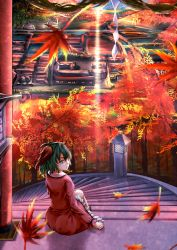 1girl animal_ears building commentary_request day dress frilled_dress frills green_eyes green_hair haru-kun highres kasodani_kyouko leaf long_sleeves looking_at_viewer looking_back nature ocean pink_dress rope shide shimenawa sitting stairs stone_lantern torii touhou tree