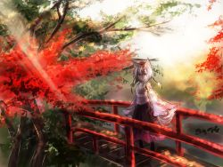 1girl animal_ears autumn_leaves bare_shoulders bridge dappled_sunlight detached_sleeves hat highres inubashiri_momiji leaf light_rays looking_at_viewer nature pom_pom_(clothes) red_eyes short_hair silver_hair solo sunbeam sunlight tail thkani tokin_hat touhou tree wolf_ears wolf_tail