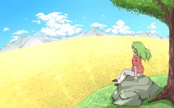 1girl blue_sky cloud cloudy_sky field flower flower_field from_behind green_hair hiyashi_mikan kazami_yuuka kazami_yuuka_(pc-98) long_hair mountain nature pants scenery shoes short_sleeves sitting sitting_on_rock sky solo sunflower touhou touhou_(pc-98) tree white_pants