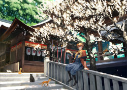 1boy animal animal_ears architecture arm_at_side arm_support bell black_boots black_cat black_hair boots calico cat cat_ears closed_mouth dappled_sunlight day east_asian_architecture flower japanese_clothes jingle_bell jumping lantern looking_at_viewer male_focus multicolored_hair orange_hair original outdoors outstretched_arm paper_lantern paw_print petals pom_pom_(clothes) railing ribbon short_over_long_sleeves short_sleeves shrine sitting sitting_on_railing sleeves_pushed_up smile spring_(season) stairs streaked_hair sunlight temple toichi_(ik07) tree tree_shade walking white_flower white_hair
