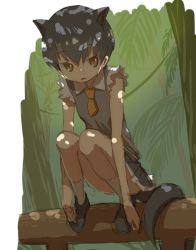 1girl animal_ears brown_eyes brown_shoes clenched_hands collar collared_shirt d: dark_brown_hair expressionless eyelashes flat_chest forest fossa_(kemono_friends) fossa_ears fossa_tail frilled_sleeves frills full_body grey_skirt hands_on_feet kemono_friends light_particles loafers long_arms looking_at_viewer nature open_mouth outdoors palm_tree plant pleated_skirt shirt shoes short_hair short_sleeves sketch skirt socks solo squatting sunlight tail tank_top tree tsurime very_short_hair vines white_shirt yoshida_on