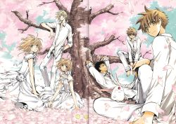 2girls 4boys absurdres against_tree black_hair blonde_hair brown_eyes brown_hair cherry_blossoms clamp dual_persona fay_d_flourite green_eyes highres kurogane_(tsubasa_chronicle) looking_at_viewer lying mokona multiple_boys multiple_girls on_back outdoors sakura_hime short_eyebrows sitting smile tree tsubasa_chronicle xiaolang