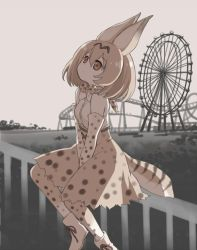 1girl amusement_park animal_ears bare_shoulders belt between_legs boku_no_friend boots bow bowtie brown_ribbon cat_ears cat_tail cross-laced_clothes dot_nose elbow_gloves eyebrows_visible_through_hair fence ferris_wheel from_side gloves greyscale ground hair_between_eyes hand_between_legs kawanobe kemono_friends light_brown_eyes lonely looking_away looking_up monochrome monochrome_background muted_color orange_hair outdoors ribbon roller_coaster sad serval_(kemono_friends) serval_ears serval_print serval_tail shirt shoe_ribbon short_hair sitting sitting_on_fence skirt sleeveless sleeveless_shirt solo spot_color striped_tail tail thighhighs tree white_boots white_footwear white_shirt