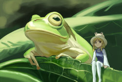 1girl animal arm_support arms_at_sides bangs blonde_hair blurry breasts brown_eyes closed_mouth depth_of_field frog frog_hat hair_ribbon hat leaf long_sleeves looking_away minigirl moriya_suwako plant ribbon short_hair_with_long_locks sitting small_breasts smile thighhighs tomitayaki touhou tress_ribbon turtleneck vest white_legwear wide_sleeves