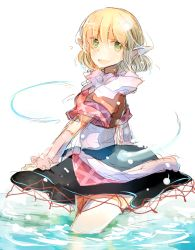 1girl atoki blonde_hair highres mizuhashi_parsee solo touhou