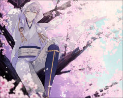1boy absurdres blurry cherry_blossoms depth_of_field highres hood in_tree japanese_clothes male_focus petals pom_pom_(clothes) smile touken_ranbu tree tsurumaru_kuninaga white_hair yamada_chickenko yellow_eyes