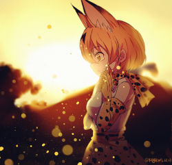 1girl animal_ears cat_ears cat_tail from_side hand_on_own_face kemono_friends open_mouth outdoors sad serval_(kemono_friends) serval_ears serval_print serval_tail solo spoilers standing sunset tail tears wide-eyed yaoshi_jun yellow_eyes