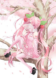 1girl cherry cherry_blossoms covering_mouth detached_sleeves fan folding_fan food fruit hair_ornament hatsune_miku highres holding koyoi_(ruka) looking_at_viewer necktie petals pink_eyes pink_hair pleated_skirt sakura_miku sitting skirt smile solo tree tree_branch twintails vocaloid