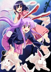 2girls :3 animal_ears bamboo blazer blush bunny bunny_ears bunny_tail carrot dress highres inaba_tewi jacket jewelry long_sleeves mana_(gooney) multiple_girls neckerchief necklace open_mouth pendant pink_dress pink_eyes pink_hair purple_hair red_eyes reisen_udongein_inaba shirt skirt smile tail touhou