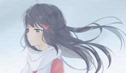 1girl black_hair hair_ornament hairclip hikari_(pokemon) long_hair looking_to_the_side pokemon pokemon_(game) pokemon_dppt scarf solo transistor