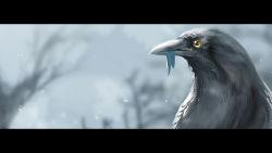 bird blurry_background highres no_humans outdoors pixiv_fantasia pixiv_fantasia_fallen_kings yellow_sclera yuushoku