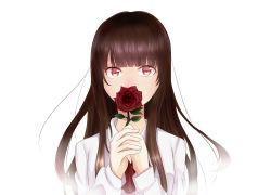 1girl bangs blunt_bangs brown_hair flower highres ib ib_(ib) long_hair norichi red_eyes rose solo
