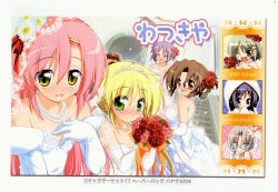 6+girls blonde_hair blush breasts brown_hair dress drill_hair folded_ponytail green_eyes hayate_no_gotoku! highres katsura_hinagiku long_hair looking_back maria_(hayate_no_gotoku!) multiple_girls nishizawa_ayumu pink_hair ponytail purple_hair red_eyes sanzen'in_nagi short_hair smile tennousu_athena twintails watsuki_ayamo watsukiya wedding_dress yellow_eyes