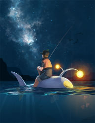1boy fishing_line fishing_rod from_behind hat kezrek lanturn light looking_up luvdisc night pokemon pokemon_trainer shorts sky star_(sky) starry_sky vest watermark web_address wingull