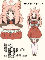 1girl artist_request breasts cat character_sheet dress female flat_color furry japanese long_hair pink_hair red_eyes solo translation_request