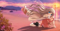 1girl barefoot beach blue_eyes bottomless cape cat eyebrows_visible_through_hair floating_hair flower head_tilt kud_wafter lens_flare little_busters! long_hair looking_at_viewer looking_back na-ga noumi_kudryavka ocean outdoors pink_shirt shirt silver_hair sitting solo sun very_long_hair