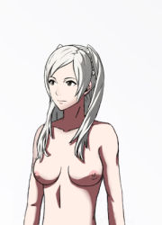 1girl black_eyes breasts brown_eyes fire_emblem fire_emblem:_kakusei long_hair my_unit nipples nude_filter photoshop portrait silver_hair solo super_smash_bros. tagme twintails white_hair