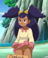 1girl bridge brown_eyes dark_skin flashing iris_(pokemon) nintendo no_panties pokemon pokemon_(anime) pussy sign solo tagme very_long_hair