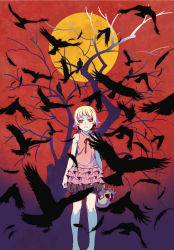 1girl bird blonde_hair branch crow dress feathers frilled_dress frills highres kizumonogatari looking_at_viewer monogatari_(series) moon official_art oshino_shinobu pointy_ears raven_(animal) red_eyes ribbon short_hair skull sleeveless tree