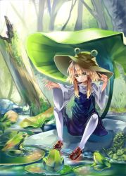 1girl blonde_hair brown_shoes commentary_request eyeball frog green_eyes hair_ribbon hat highres leaf lily_pad moriya_suwako nature open_mouth outstretched_arms red_ribbon ribbon rock shoes sitting solo touhou tree tress_ribbon white_legwear wide_sleeves zhu_xiang