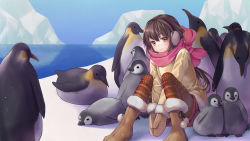 1girl bangs between_legs bird blush boots brown_boots brown_eyes brown_hair closed_mouth coat earmuffs enpera eyebrows_visible_through_hair fur_trim geroro glacier hair_between_eyes hand_between_legs highres knees_up long_hair looking_at_viewer mittens original outdoors own_hands_together pantyhose penguin pink_scarf scarf shorts sitting smile snow solo