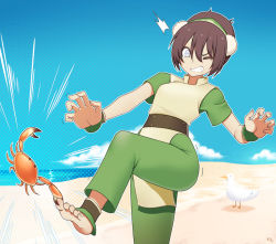 1girl avatar:_the_last_airbender avatar_(series) barefoot beach bird black_hair blue_sky crab feet kuroonehalf sand seagull sky solo toph_bei_fong