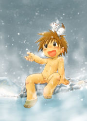 1boy animal blush breath brown_hair cold male mitsui_jun navel nipples nude open_mouth penis shota sitting smile snow solo steam water wet