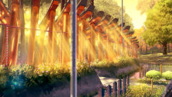 blurry bridge depth_of_field flower fushimi_inari_taisha highres lamppost lens_flare light_rays niko_p no_humans original outdoors path railing road scenery sunlight sunset torii tree water yellow
