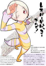 1girl character_profile gecko gujira personification solo tagme tail translation_request