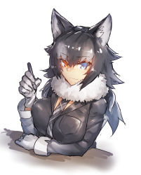 1girl animal_ears bangs black_hair black_jacket blue_eyes breast_pocket breasts closed_mouth commentary_request eyebrows_visible_through_hair fur_collar gloves grey_hair grey_wolf_(kemono_friends) heterochromia highres jacket kemono_friends large_breasts long_hair long_sleeves looking_at_viewer melon22 multicolored_hair pen pocket silver_necktie smile solo tsurime two-tone_hair upper_body white_gloves wolf_ears yellow_eyes