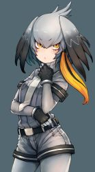 1girl bangs belt belt_buckle bird_wings black_belt black_gloves black_hair bodystocking breast_pocket breasts buckle chobi_(sakuyasakuhana) closed_mouth collared_shirt cowboy_shot crossed_arms eyebrows_visible_through_hair fingerless_gloves fingernails gloves grey_background grey_hair grey_legwear grey_necktie grey_shirt grey_shorts hair_between_eyes hair_ornament hair_tie hand_on_own_chin hand_up head_wings highres kemono_friends legs_apart long_hair long_sleeves looking_at_viewer low_ponytail multicolored_hair necktie orange_eyes orange_hair pantyhose pocket shirt shoebill_(kemono_friends) short_sleeves shorts side_ponytail silver_hair simple_background sleeve_cuffs small_breasts solo tsurime two-tone_hair wing_collar wings