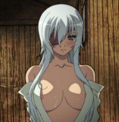 1girl breasts eyepatch green_eyes highres hyakka_ryouran_samurai_girls large_breasts long_hair nipples screencap smile solo standing stitched white_hair yagyuu_gisen