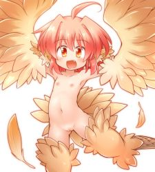 1girl :d ahoge animal_ears armpits arms_up fang feathered_wings feathers flat_chest hair_intakes happy harpy kso loli looking_at_viewer monster_girl navel nipples nude open_mouth orange_eyes original pink_hair pussy short_hair simple_background smile solo stomach tail white_background winged_arms wings