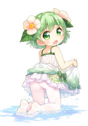 1girl ass blush dress eyebrows flower green_eyes green_hair hair_flower hair_ornament kinoko-san kito_(sorahate) looking_at_viewer looking_back open_mouth original pantyhose short_hair simple_background solo thick_eyebrows water wet white_background white_legwear