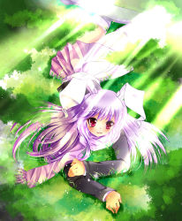 1girl animal_ears blazer blush bunny_ears grass lavender_hair long_hair looking_at_viewer lying mo_huai_mao nature on_stomach open_mouth red_eyes reisen_udongein_inaba scarf skirt solo thighhighs touhou white_legwear zettai_ryouiki