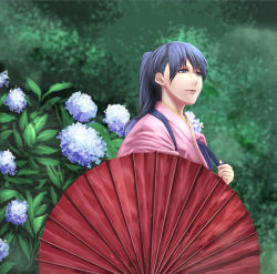 10s 1girl black_hair blue_eyes blue_flower flower holding holding_umbrella houshou_(kantai_collection) hydrangea ishii_hisao japanese_clothes kantai_collection kimono light_smile lips long_hair oriental_umbrella pink_kimono ponytail purple_flower solo tasuki umbrella