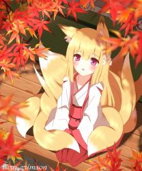 1girl animal_ears blonde_hair blush commentary_request eyebrows eyebrows_visible_through_hair flower fox_ears hair_flower hair_ornament highres japanese_clothes kimono leaf maple_leaf miko non_(wednesday-classic) original red_eyes sitting solo tatami